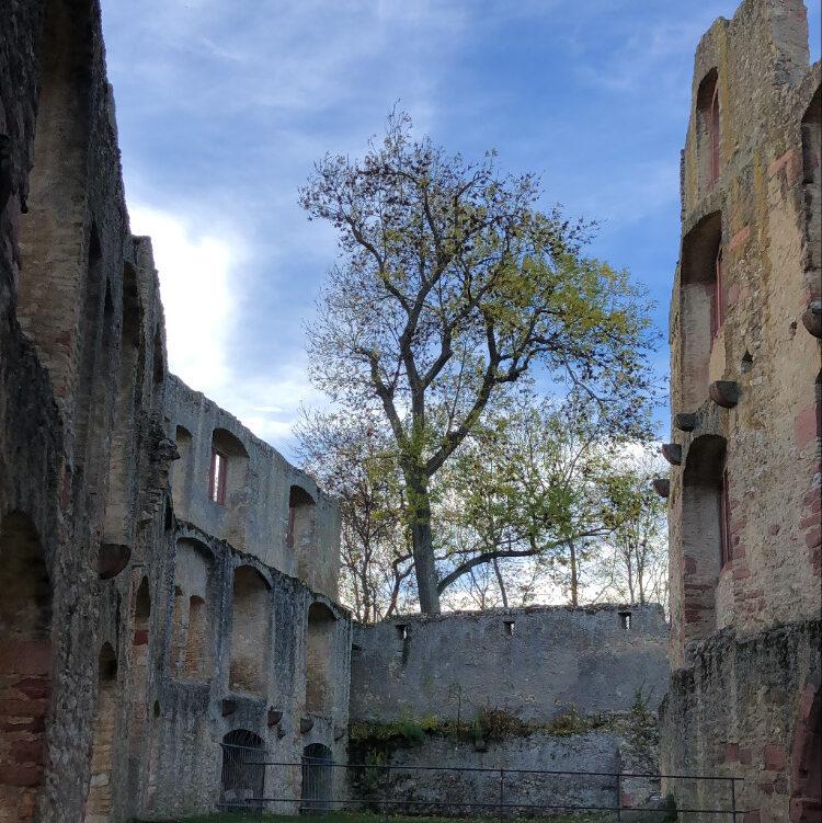 Landskron-Ruine